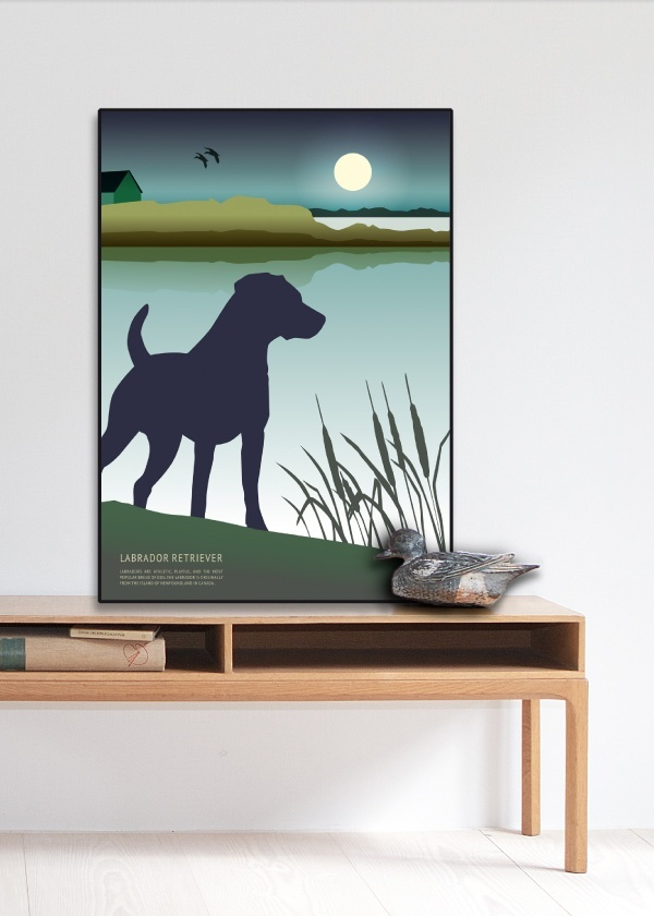 Labrador Retriever Plakat
