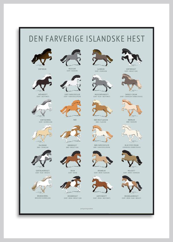 køb vores populærere plakat med heste