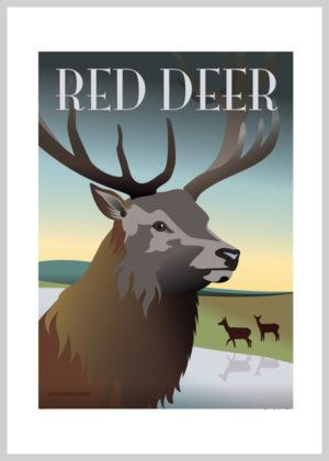 Rød hjort med åbne vider som bagggrund