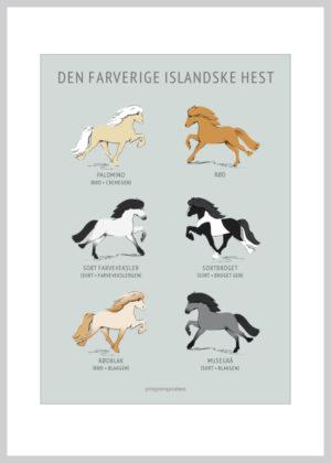 6 små Islandskheste der illustrere islænderes forskellige farver