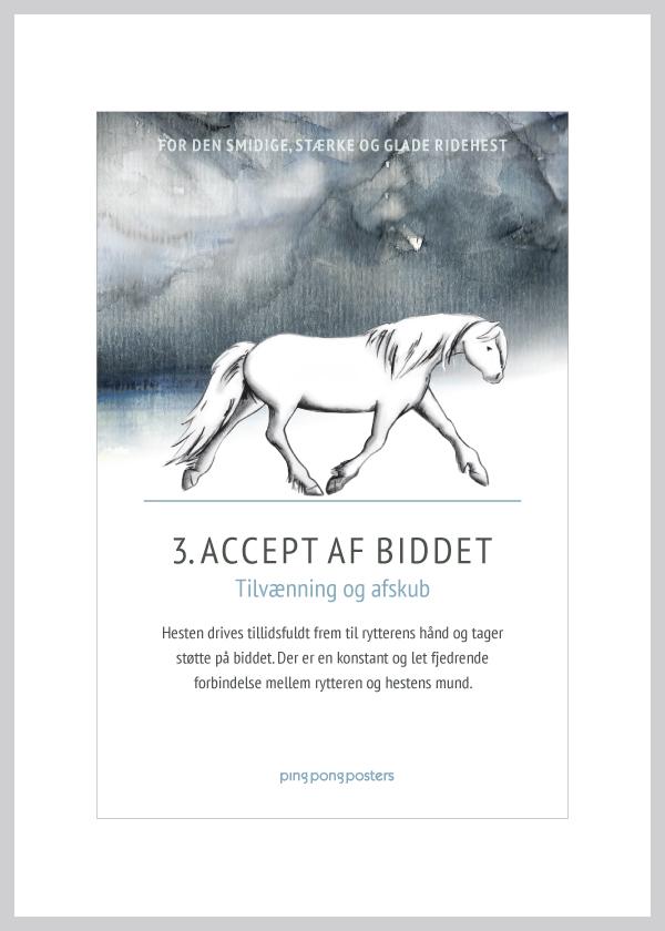 Basic Step kort med islænderhesten accept af biddet i blå nuancer