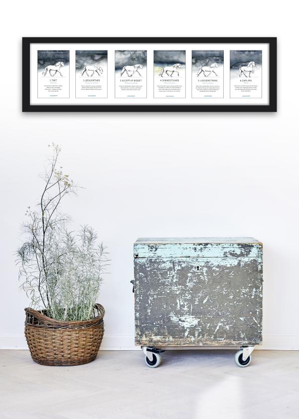 6 Basic Step kort med islænderhesten hænger vandret på vægen