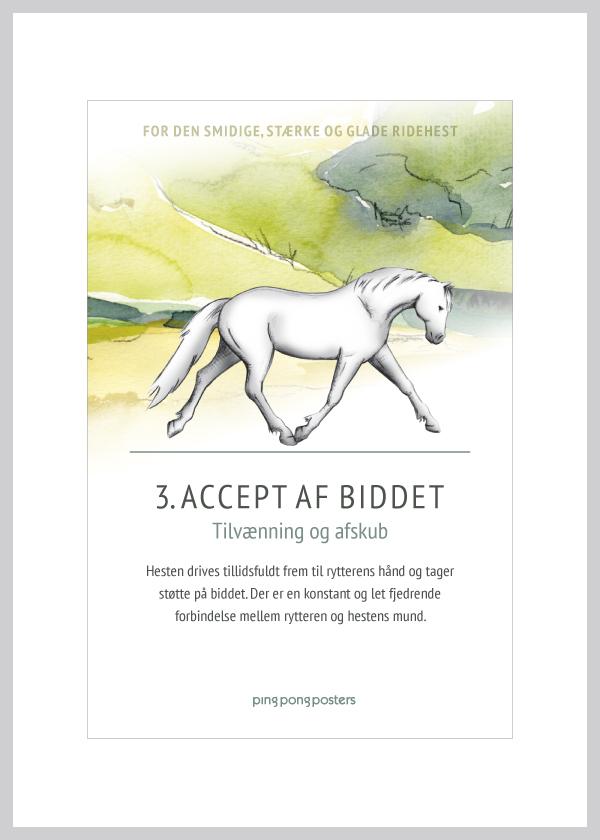 Basic Step Dressur kort med accept af biddet