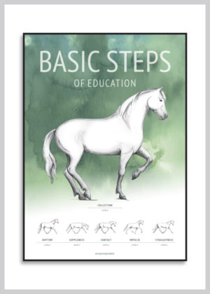 Basic Steps of education poster in green colors