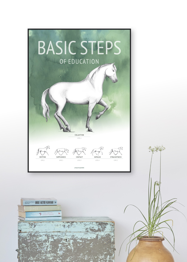 Basic Steps of education poster in green colors on a wall