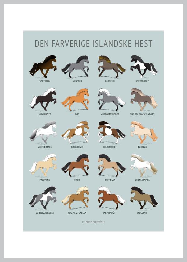 Den Farverige Islandske Hest kort