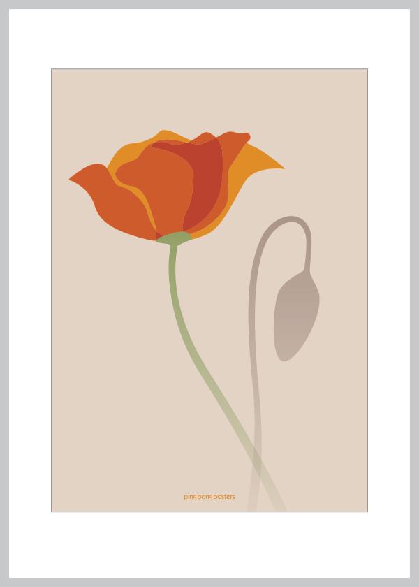 Valmue lykønskningskort med lyserød nuance som baggrund