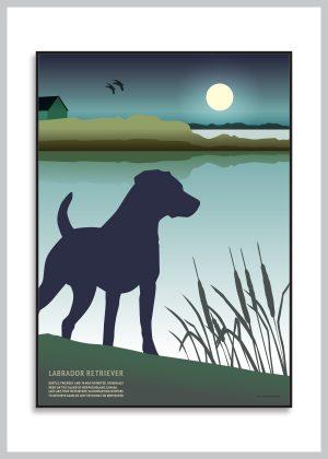 Labrador Retriever plakat i grønne og blå nuancer