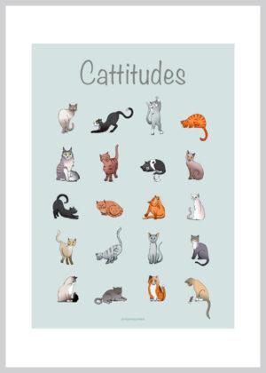 20 forskellige katte der viser deres attituder
