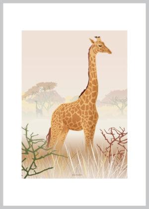 A5 kort med giraf der kigger ud over landskabet