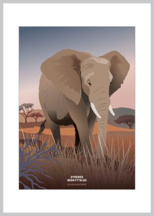 A5 kort med afrikansk elefant
