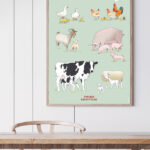 Plakat med tegnede landbrugsdyr hænger på væggen