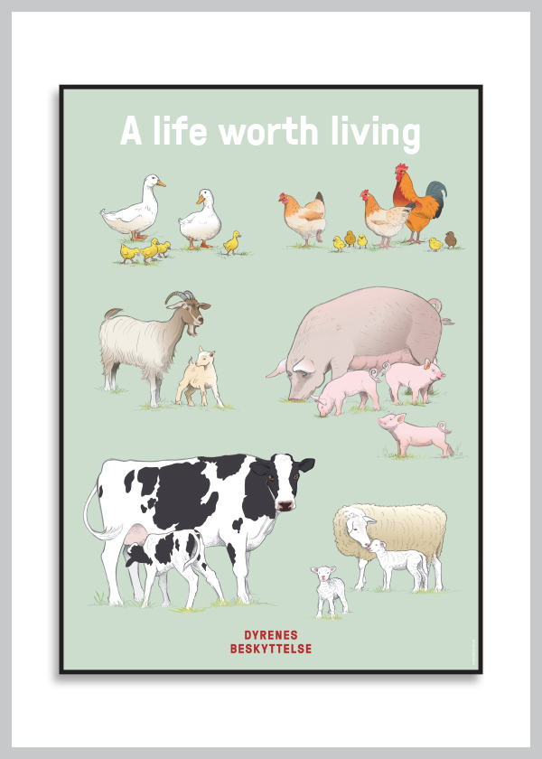 Plakat med tegnede landbrugsdyr